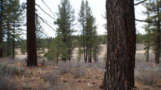 Listing Image 17 for 10700 Winchester Court, Truckee, CA 96161