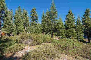 Listing Image 12 for 13025 Roundhill Drive, Truckee, CA 96161