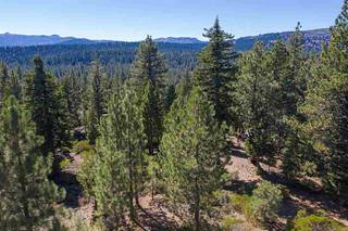 Listing Image 3 for 13025 Roundhill Drive, Truckee, CA 96161