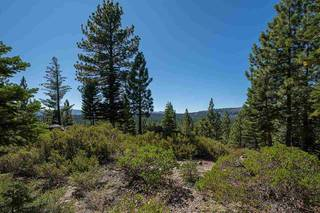 Listing Image 6 for 13025 Roundhill Drive, Truckee, CA 96161