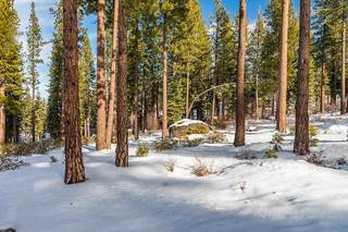 Listing Image 8 for 8243 Ehrman Drive, Truckee, CA 96161