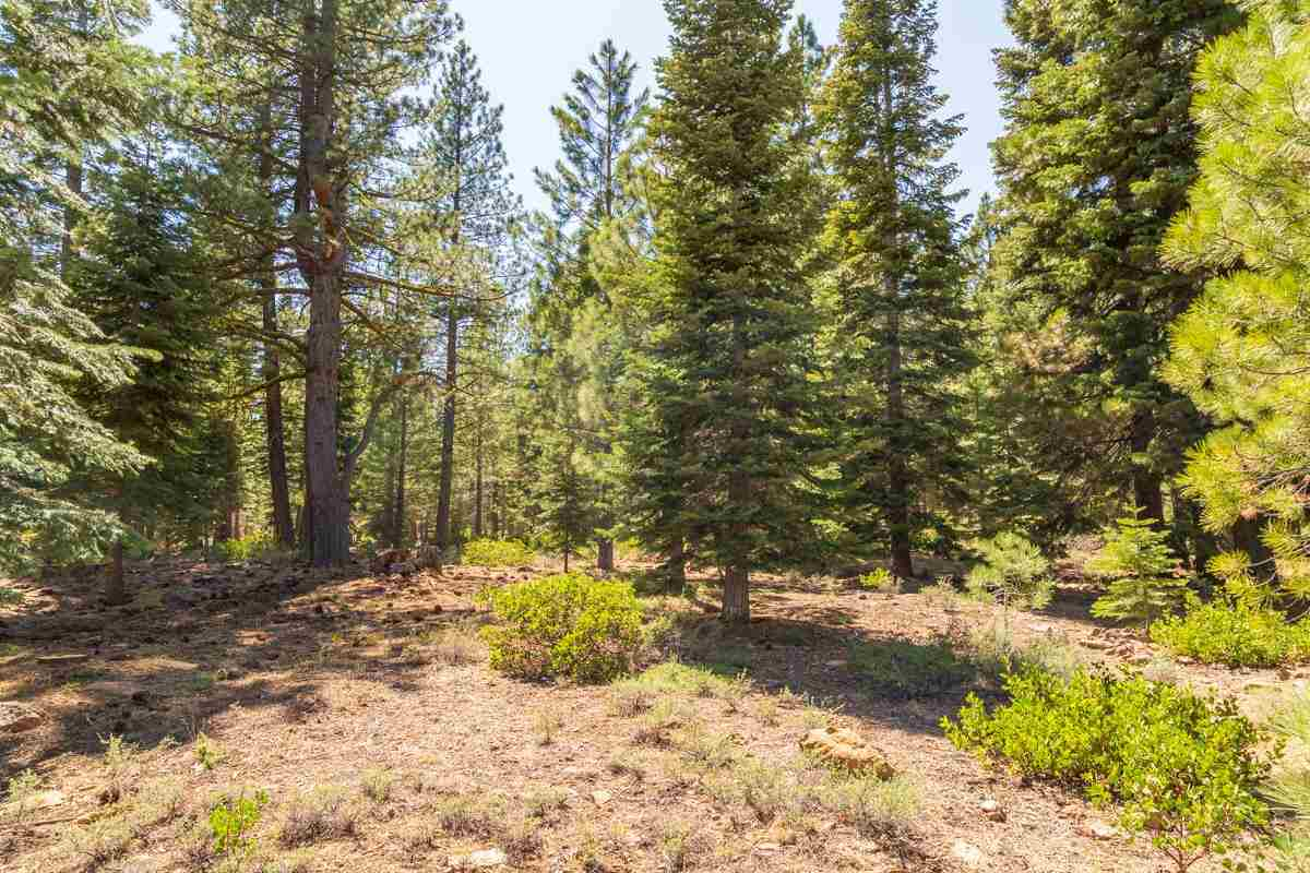 Image for 111 Dave Dysart, Truckee, CA 96161