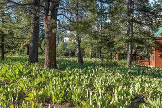 Listing Image 18 for 17030 Skislope Way, Truckee, CA 96161