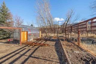 Listing Image 13 for 526 Longhorn Drive, Loyalton, CA 96118