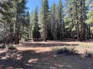 Listing Image 5 for 10335 Old Brockway Road, Truckee, CA 96161