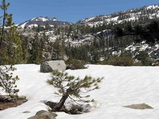 Listing Image 3 for 11667 Lola Montez Road, Soda Springs, CA 95728