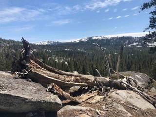 Listing Image 6 for 11667 Lola Montez Road, Soda Springs, CA 95728