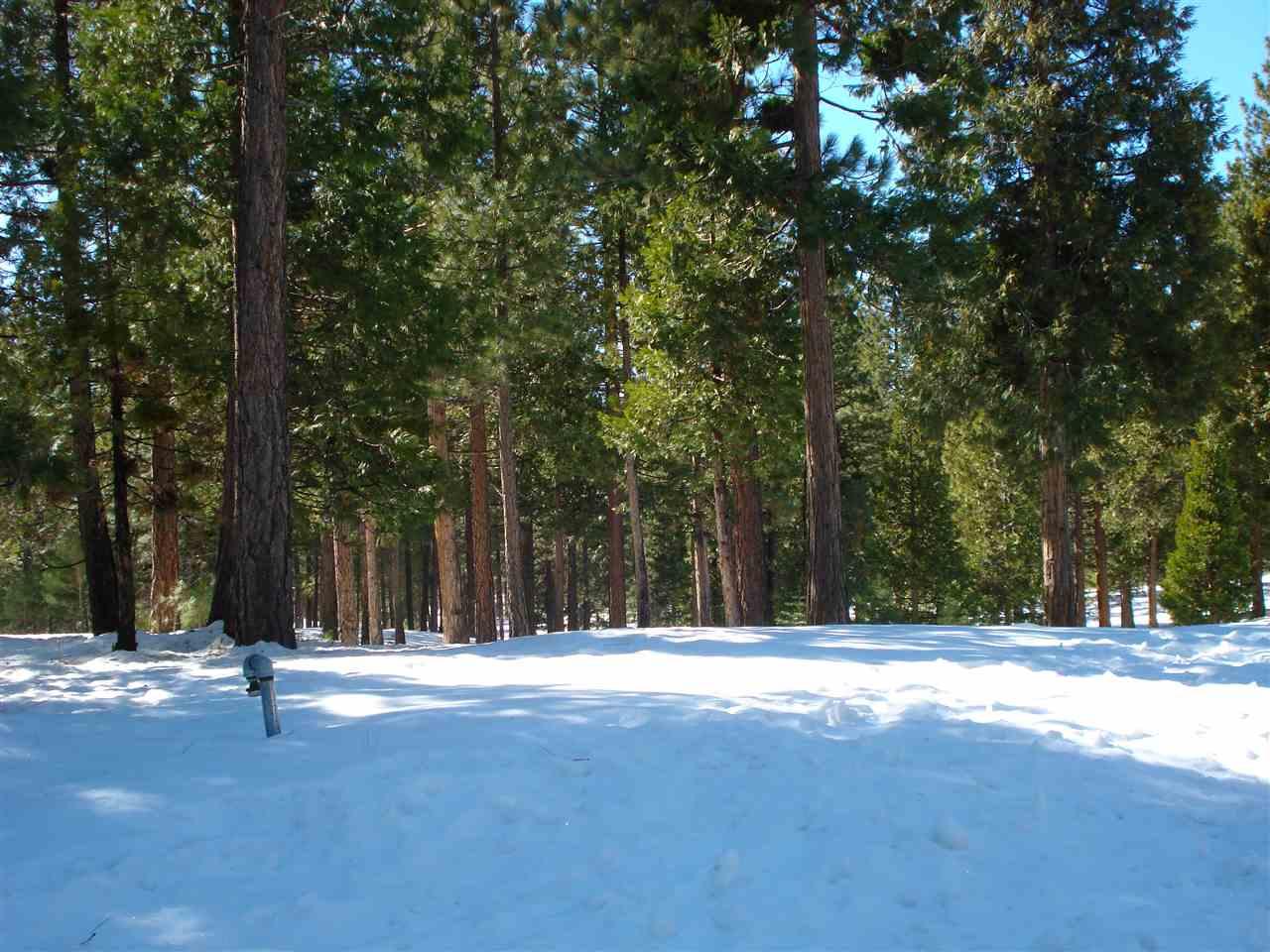 Image for 745 Blacktail Ridge, Portola, CA 96122