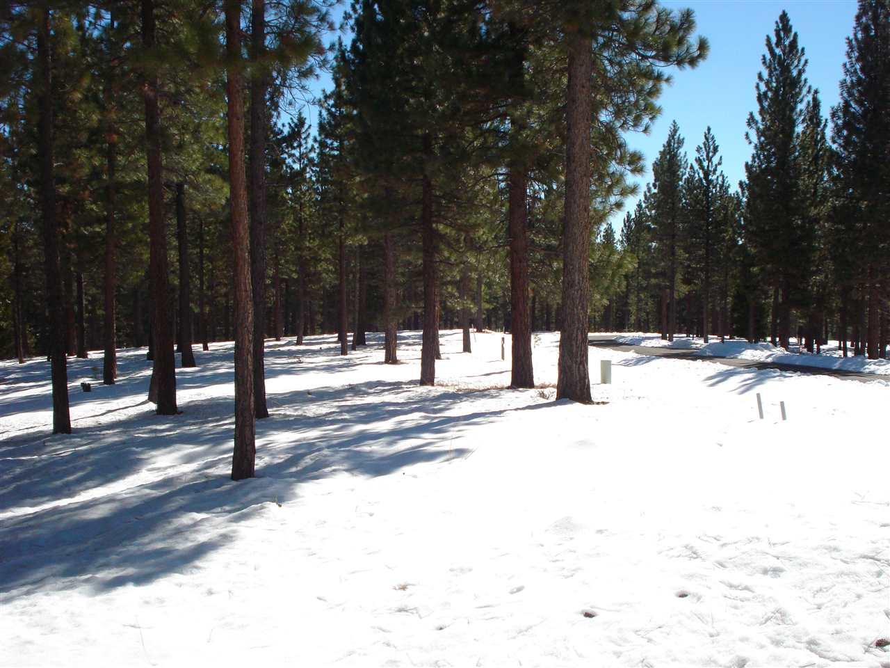Image for 190 Red Hawk Drive, Portola, CA 96122