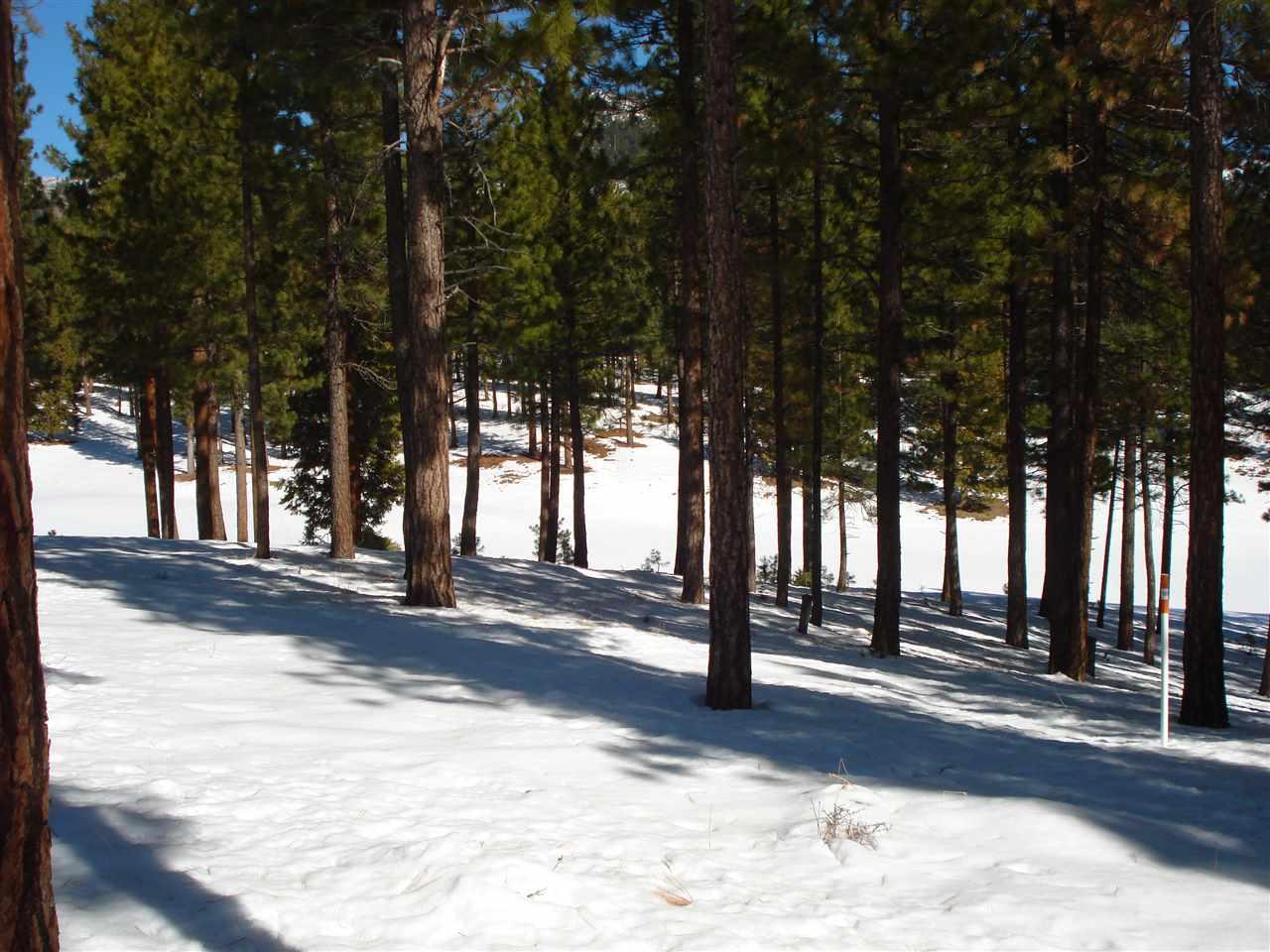 Image for 210 Red Hawk Drive, Portola, CA 96122