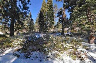Listing Image 13 for 14570 Denton Avenue, Truckee, CA 96161-3616