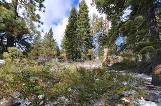 Listing Image 3 for 14570 Denton Avenue, Truckee, CA 96161-3616