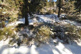 Listing Image 9 for 14570 Denton Avenue, Truckee, CA 96161-3616