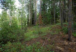 Listing Image 6 for 12815-12755 Zurich Place, Truckee, CA 96161