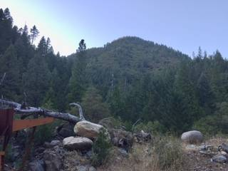 Listing Image 12 for 420 Goodyears Creek Road, Downieville, CA 95936