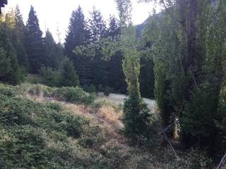 Listing Image 21 for 420 Goodyears Creek Road, Downieville, CA 95936