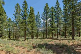 Listing Image 14 for 8225 Lahontan Drive, Truckee, CA 96161-1234