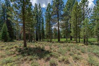 Listing Image 10 for 8225 Lahontan Drive, Truckee, CA 96161-1234