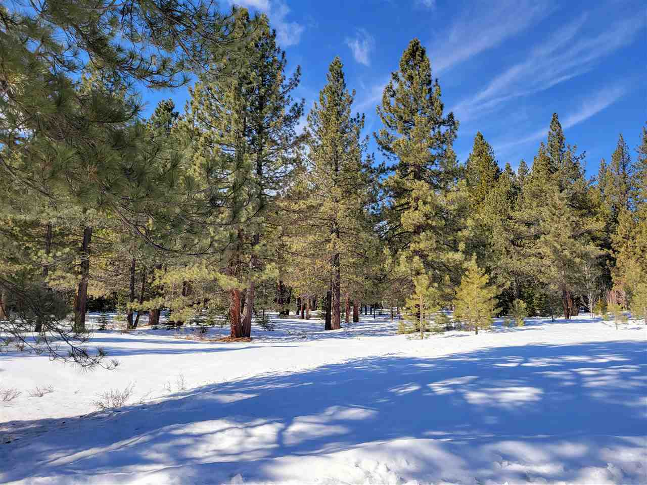 Image for 11690 Bottcher Loop, Truckee, CA 96161