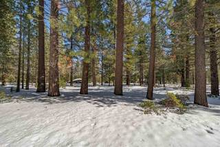 Listing Image 20 for 11054 China Camp Road, Truckee, CA 96161