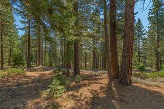 Listing Image 7 for 11523 China Camp Road, Truckee, CA 96161