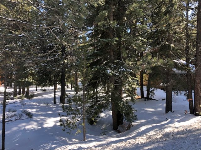 Image for 17291 Northwoods Boulevard, Truckee, CA 96161
