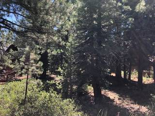 Listing Image 2 for 17291 Northwoods Boulevard, Truckee, CA 96161