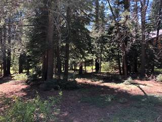 Listing Image 3 for 17291 Northwoods Boulevard, Truckee, CA 96161