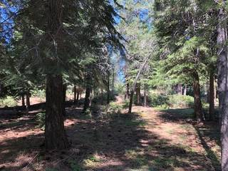 Listing Image 4 for 17291 Northwoods Boulevard, Truckee, CA 96161