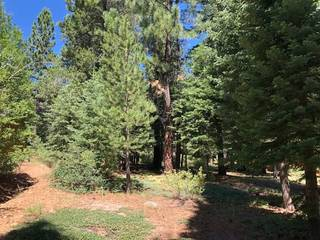 Listing Image 5 for 17291 Northwoods Boulevard, Truckee, CA 96161