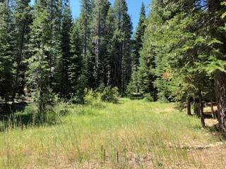 Listing Image 6 for 17291 Northwoods Boulevard, Truckee, CA 96161