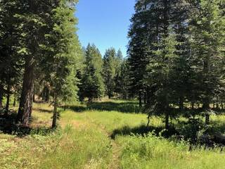 Listing Image 7 for 17291 Northwoods Boulevard, Truckee, CA 96161