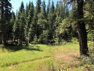 Listing Image 8 for 17291 Northwoods Boulevard, Truckee, CA 96161