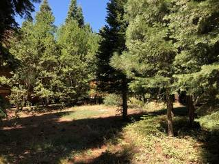 Listing Image 9 for 17291 Northwoods Boulevard, Truckee, CA 96161