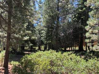 Listing Image 10 for 17291 Northwoods Boulevard, Truckee, CA 96161