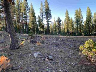 Listing Image 10 for 8641 Lloyd Tevis, Truckee, CA 96161