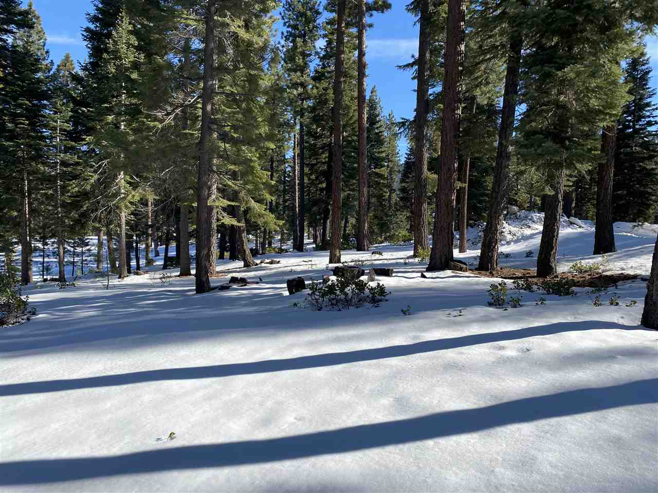 Image for 12365 Garwood Dean, Truckee, CA 96161