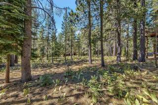 Listing Image 14 for 11884 Muhlebach Way, Truckee, CA 96161-0000
