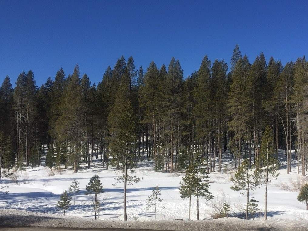 Image for 12173 Northwoods Boulevard, Truckee, CA 96161