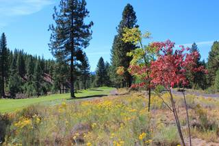 Listing Image 19 for 168 Fox Sparrow Court, Portola, CA 96122