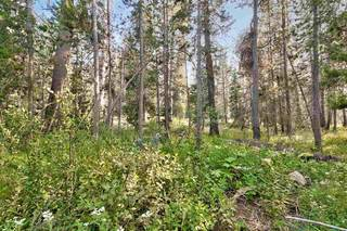Listing Image 13 for 51357 Donner Pass Road, Soda Springs, CA 95728