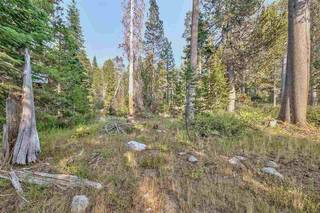 Listing Image 2 for 51357 Donner Pass Road, Soda Springs, CA 95728