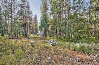 Listing Image 3 for 51357 Donner Pass Road, Soda Springs, CA 95728