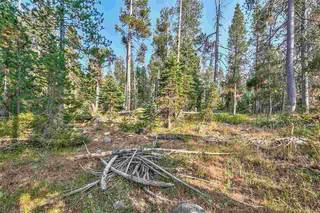 Listing Image 4 for 51357 Donner Pass Road, Soda Springs, CA 95728