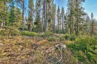 Listing Image 5 for 51357 Donner Pass Road, Soda Springs, CA 95728
