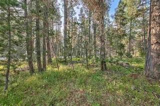 Listing Image 7 for 51357 Donner Pass Road, Soda Springs, CA 95728