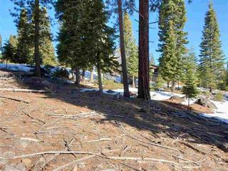 Listing Image 14 for 9321 Nine Bark Road, Truckee, CA 96161-0000