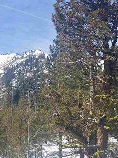 Listing Image 12 for 1432 Mineral Springs Trail, Alpine Meadows, CA 96161-1564