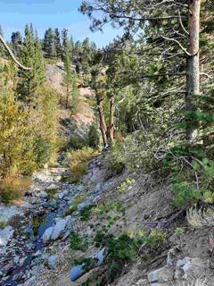 Listing Image 5 for 1432 Mineral Springs Trail, Alpine Meadows, CA 96161-1564