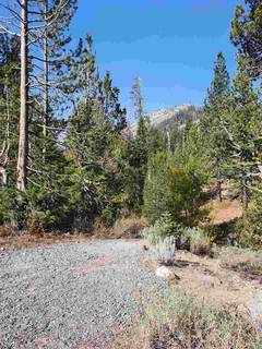 Listing Image 7 for 1432 Mineral Springs Trail, Alpine Meadows, CA 96161-1564